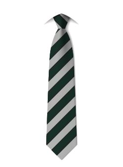 tie-year-11-honley-high-school-huddersfield.png