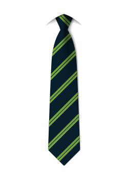 tie-year11-royds-hall-community-school-huddersfield.png
