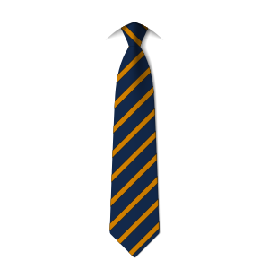 year-10-tie-colne-valley-high-school-huddersfield