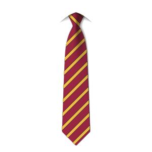 year-8-tie-colne-valley-high-school-huddersfield
